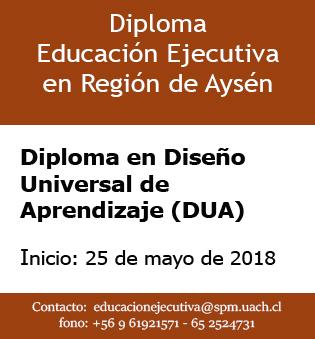 educacion-ejecutiva-dua-coyhaique-2018